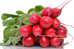 Radishes Foto de Stock Royalty Free