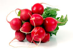 Free Radishes Stock Photos - 442303