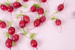 radishes Imagens de Stock Royalty Free