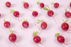 radishes Imagem de Stock
