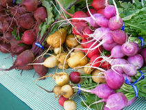 Radishes and beets at farmers' market Stock Images