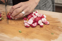 Radishes being cut for a dinner salad on a wooden cutting board. Red radishes being cut for a dinner salad on a wooden cutting board Royalty Free Stock Photo