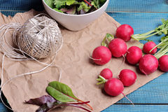 Radishes on blue rustic table. Fresh raw food diet salad.  Vegetarian food concept, healthy life style Royalty Free Stock Photo