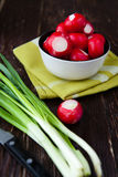 Radishes in a bowl and a bunch of green onions. Vegetables closeup Royalty Free Stock Photos