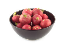 Radishes in bowl closeup isolated Stock Images