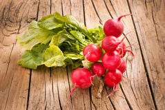 Radishes. Bunch of fresh red radishes on wooden background Royalty Free Stock Image