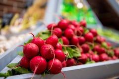 radishes royalty free stock images