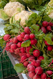 Radishes and Cauliflower. At the local market Stock Photography