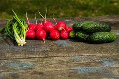 Radishes, cucumber and green onion on rustic wooden table. Outdoor Royalty Free Stock Photo