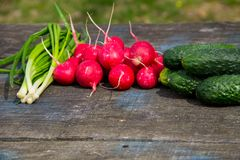 Radishes, cucumber and green onion on rustic wooden table. Outdoor Stock Images