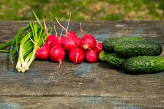 Radishes, cucumber and green onion on rustic wooden table. Outdoor Royalty Free Stock Photography
