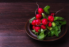 Radishes on a dark background. Bunch of radishes on a plate Royalty Free Stock Image