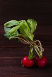 Radishes on a dark background. Spring radishes early vegetables in rustic style Royalty Free Stock Photos