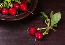 Radishes on a dark background. Spring radishes early vegetables in rustic style Royalty Free Stock Photo