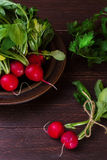 Radishes on a dark background. Spring radishes early vegetables in rustic style Royalty Free Stock Image