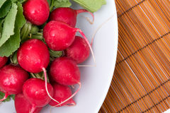 radishes in a dish Royalty Free Stock Photography