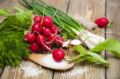 Radishes. Fresh radishes with green onions and salt on a wooden background Royalty Free Stock Images