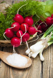 Radishes. Fresh radishes with green onions and salt on a wooden background Stock Photography