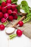 Radishes. Fresh radishes with salt on a wooden background Stock Image
