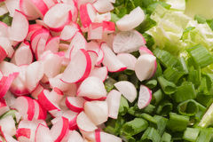 Radishes and green onions. Spring salad with radishes and green onions Royalty Free Stock Photography