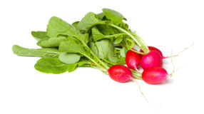 Radishes, isolated Royalty Free Stock Images