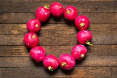 Radishes laid out in the shape of a circle on wooden table. Red, raw, whole radishes laid out in the shape of a circle on dark brown wooden table. Copy space in royalty free stock photos