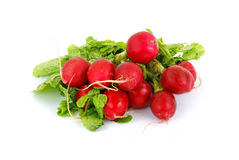 Radishes and leaves. A colorful view of fresh radishes and leaves Royalty Free Stock Photo