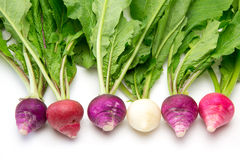 Radishes with leaves in a white background Stock Photo