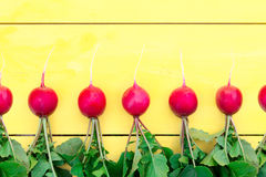 Radishes with leaves on a wooden table. A row of radishes with a tops on a wooden table. Horizontal view Stock Photography