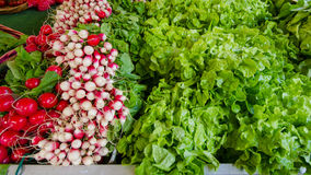 Radishes and lettuce for sale Stock Photos