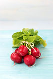 Radishes on blue board Stock Images