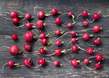 Radishes in line on a black wooden table Stock Photo