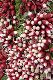 Radishes on the market Stock Photo