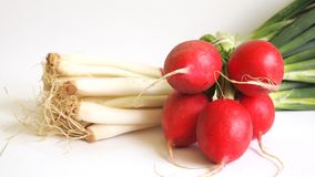Radishes and onions. Some radishes and onions on white background Stock Photo