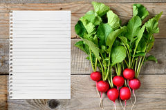 Radishes and paper for recipe Royalty Free Stock Image