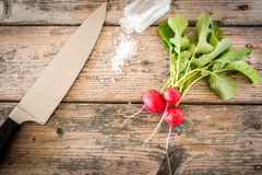Radishes ready to be eaten Royalty Free Stock Photography