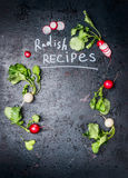 Radishes recipes , lettering on rustic vintage background with colorful fresh radishes. Top view Stock Images