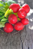 Radishes on rustic background Royalty Free Stock Photos