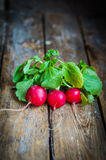 Radishes on rustic wooden background Royalty Free Stock Images