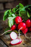 Radishes on rustic wooden background Stock Photography