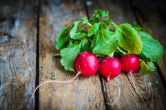 Radishes on rustic wooden background Royalty Free Stock Photography