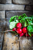 Radishes on rustic wooden background Royalty Free Stock Photos