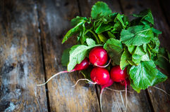 Radishes on rustic wooden background Stock Image