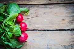 Radishes on rustic wooden background Stock Photos