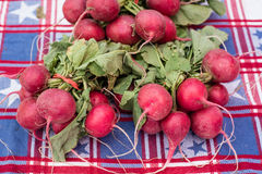 Radishes for sale at a farmers market Royalty Free Stock Photo