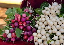 Radishes for sales on a market Royalty Free Stock Photo