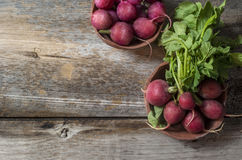 Radishes on the table Stock Photos