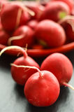 Radishes on a table Stock Photo