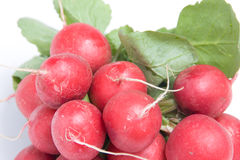 Radishes vermelhos Fotografia de Stock Royalty Free