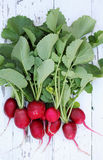 Radishes on a white board Royalty Free Stock Photo